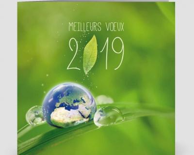 Le Conseil d'Administration et l'équipe pédagogique vous souhaite une bonne année 2019.